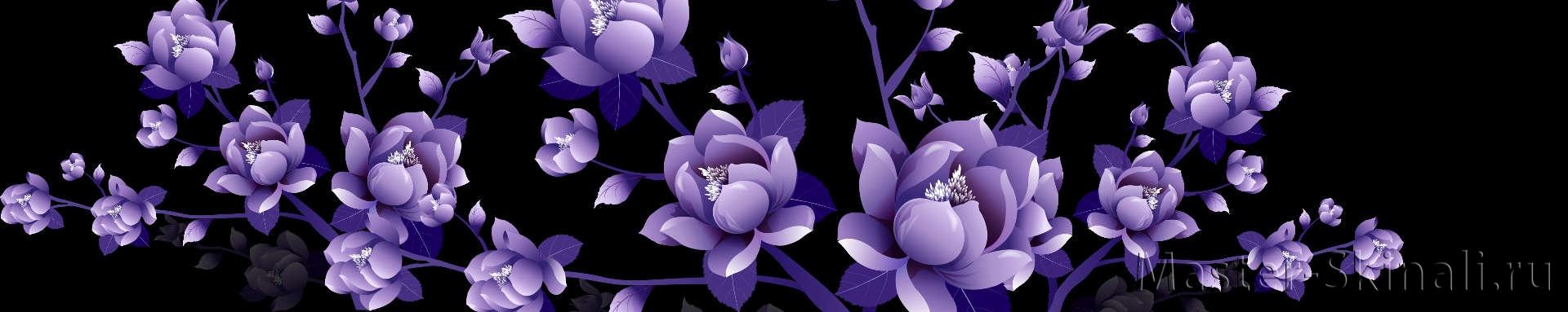 розы нью фото